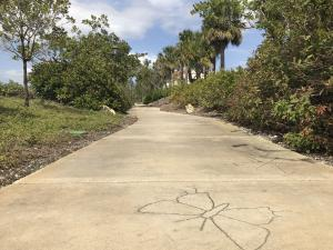 butterfly motif engraved in sidewalk at seabourn cove