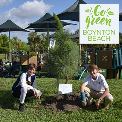 two young boys leaning next to a newly planted tree